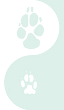 left column paw graphic